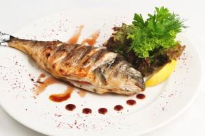 דגת הארץ - יחסי ציבור חנויות דגים